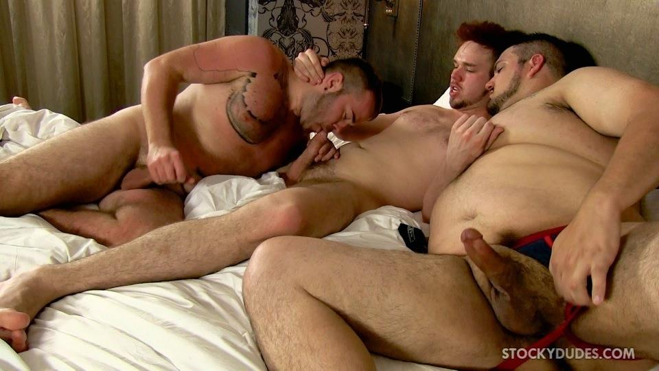 the expert, young gay cock sucking movies an education in hung cock with you
